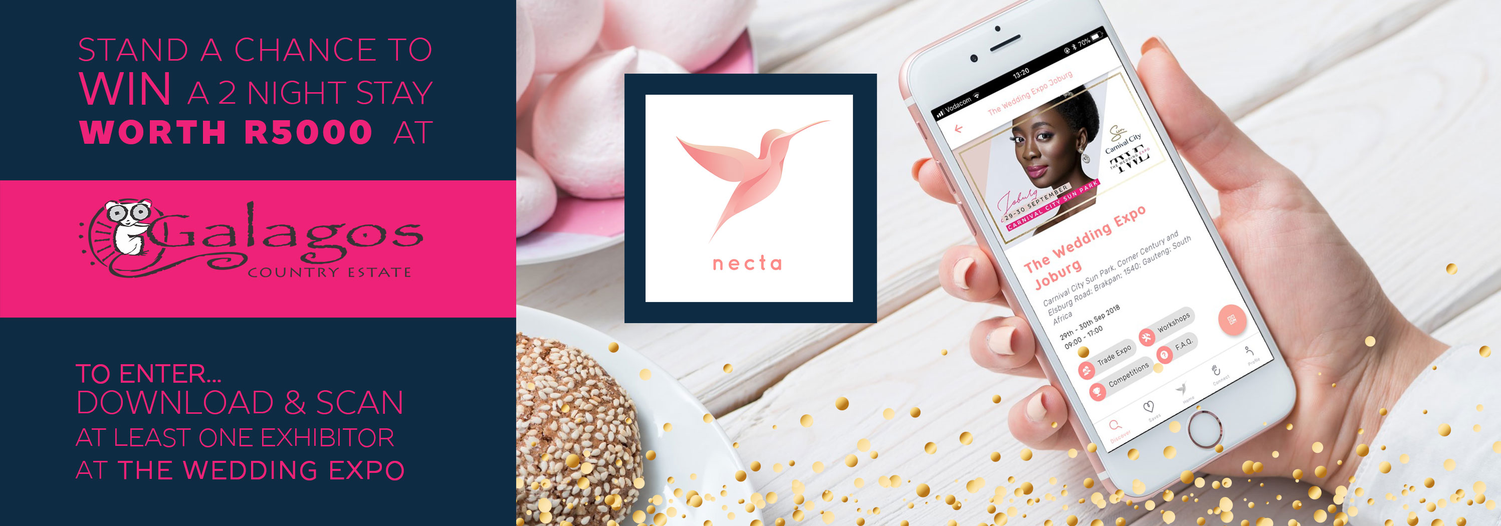 Website-slides-necta